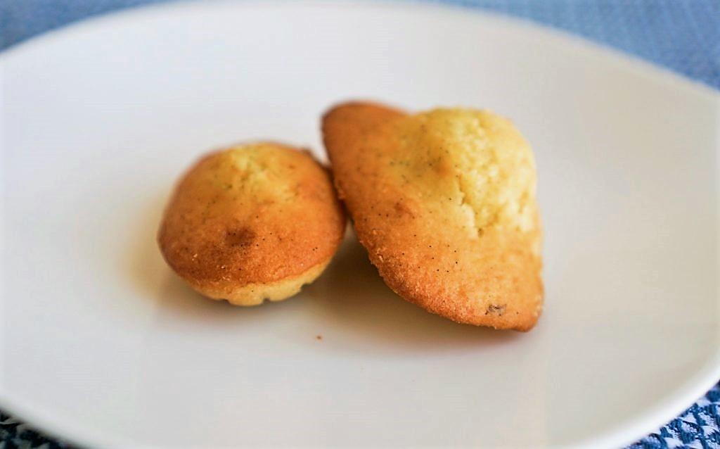 recette de madeleines